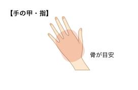 手の甲・指